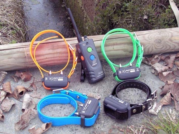 Collare GPS per cani da caccia