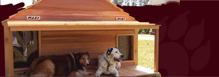 Cucce per cani coibentate accesori cane cucce for Cucce per gatti da esterno coibentate