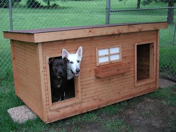 Cucce per cani coibentate accesori cane cucce for 2 door dog house