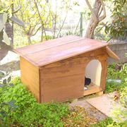 costruire cuccia per cani coibentata
