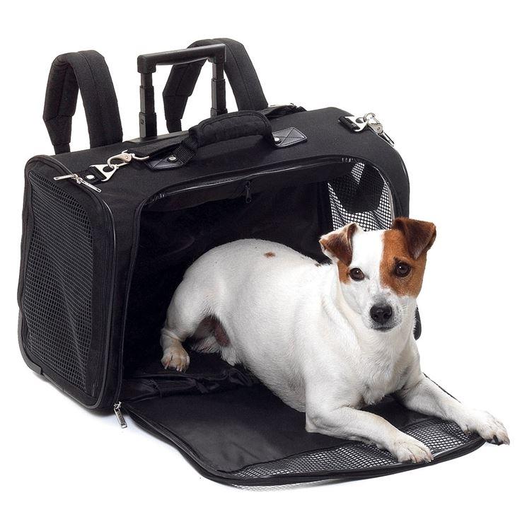 Esempio di trolley base per cani