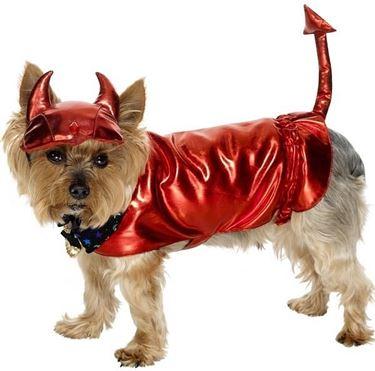 Vestito per carnevale per cane da diavoletto
