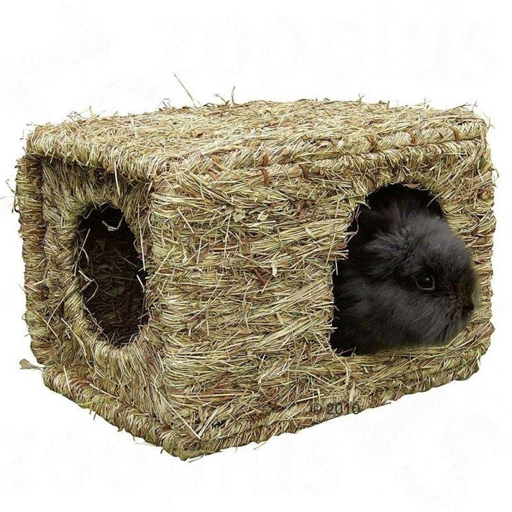 Cassetta in erba per coniglio nano