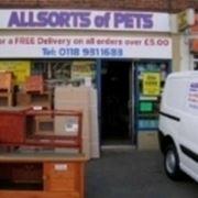 negozio animali