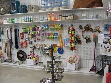 negozio accessori