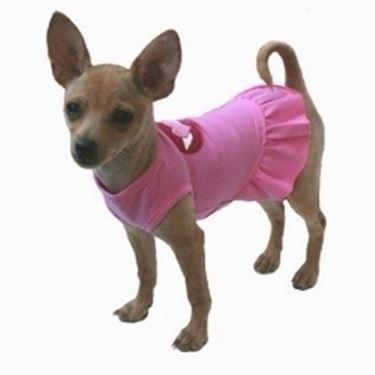 abbigliamento cani