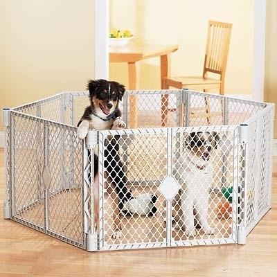 Recinti per cani accesori cane come scegliere un for Cani da tenere in casa