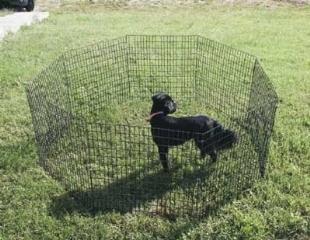 Recinti per cani accesori cane come scegliere un - Recinti per giardino ...