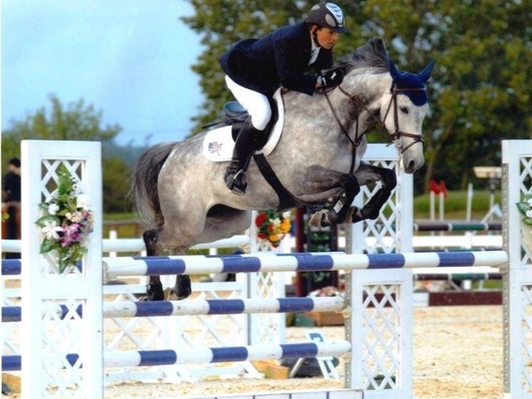 cavalli salto