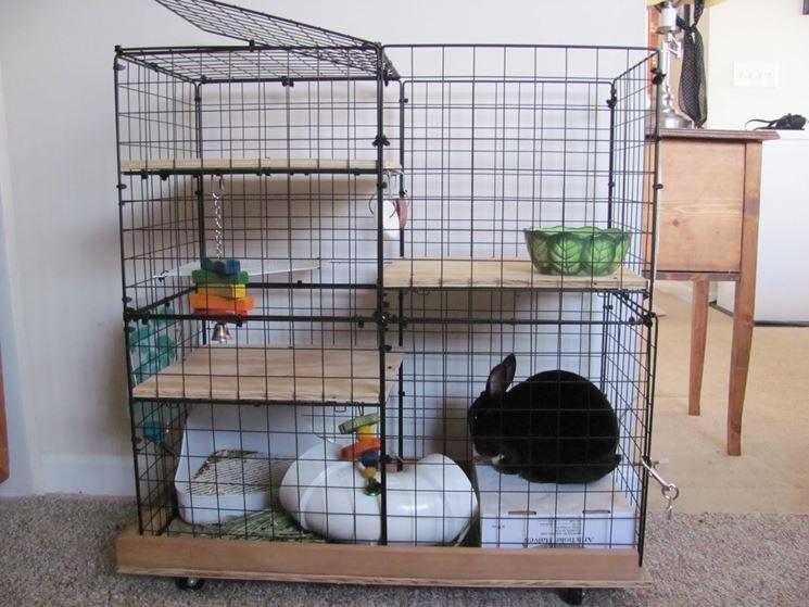 Gabbia per conigli a più piani