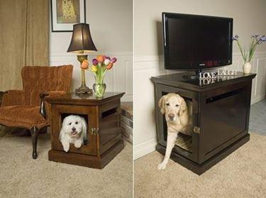 cani appartamento