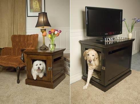 cani da appartamento - Addestramento cani