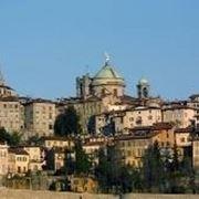 Allevamento cani Bergamo