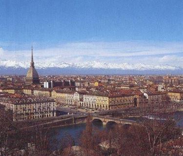 Allevamento cani Torino
