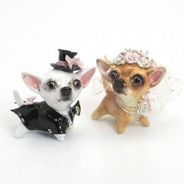 coppia di Chihuahua finti