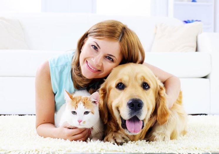 adottare cane