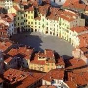 canile lucca