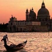 canile venezia