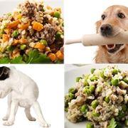 cibo naturale cane