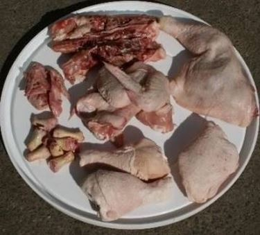 cani cibo alimentazione