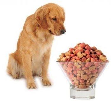 crocchette cani