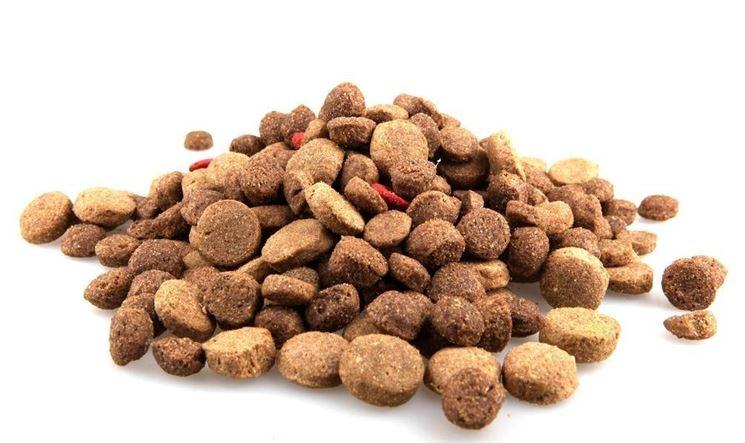 Risultati immagini per crocchette per cani