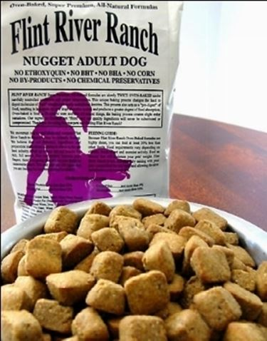 cani mangimi cibo