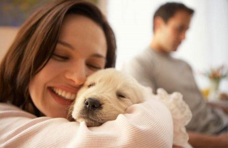Educazione del cane: un aspetto molto importante per la convivenza