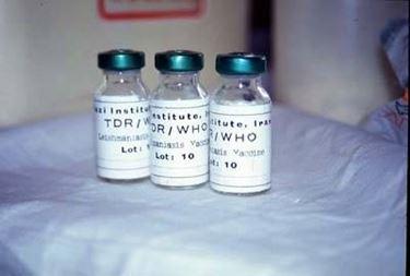 vaccino cani