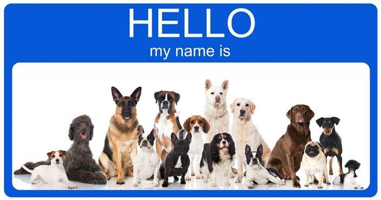 scegliere il nome