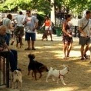 Parco per cani