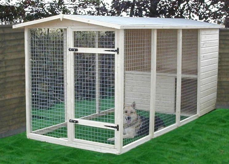Esempio di sistemazione in una pensione per cani.