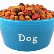 foto cibo cane