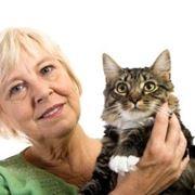 croccantini gatti
