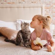 gatti e bambini
