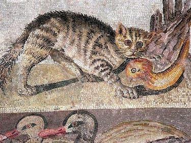 Antico mosaico con gatto.