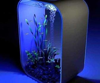 Led acquario