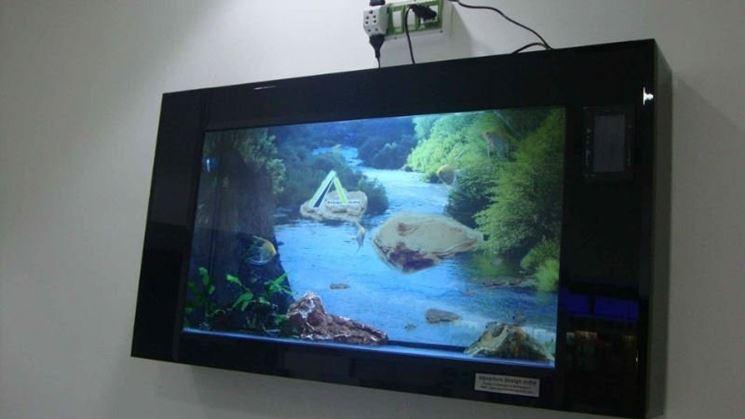 Bellissimo acquario a parete