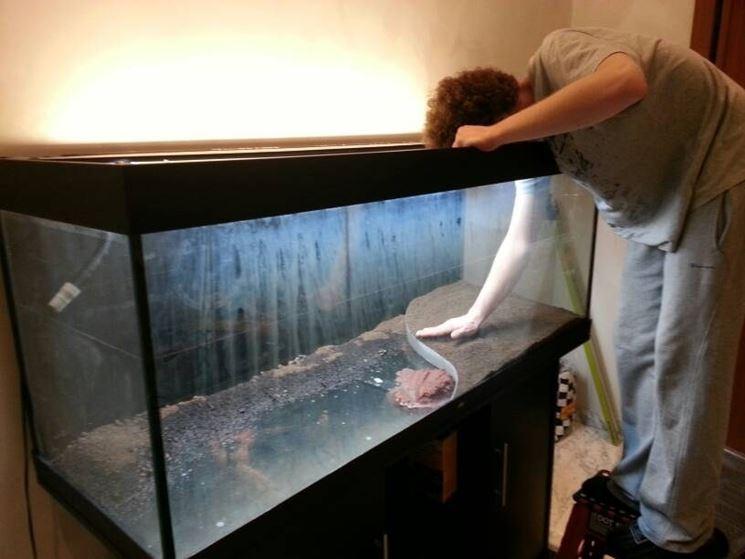 Meticolosa pulizia acquario