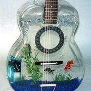 un acquario alquanto originale