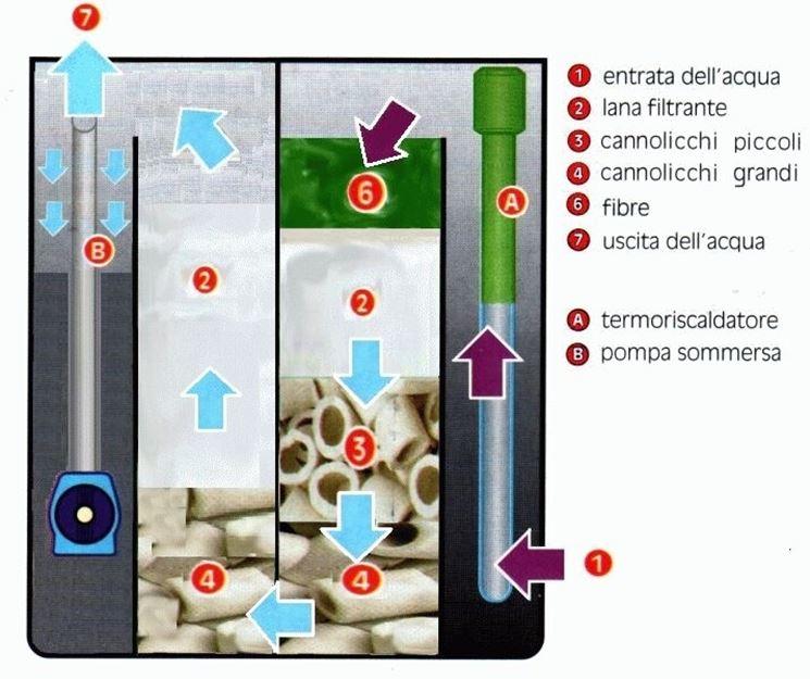 Esempio materiali interni al filtro per acquario