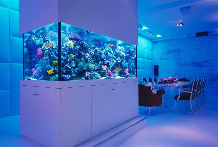 Esempio di particolare decorazione per acquario