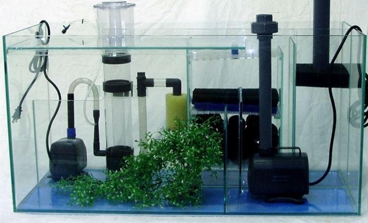 Struttura filtro acquario