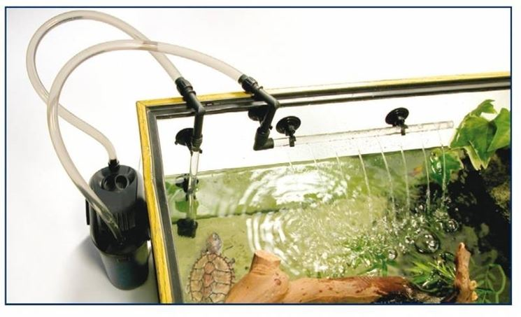 Montaggio filtro acquario accessori per acquario come for Acquario esterno per tartarughe
