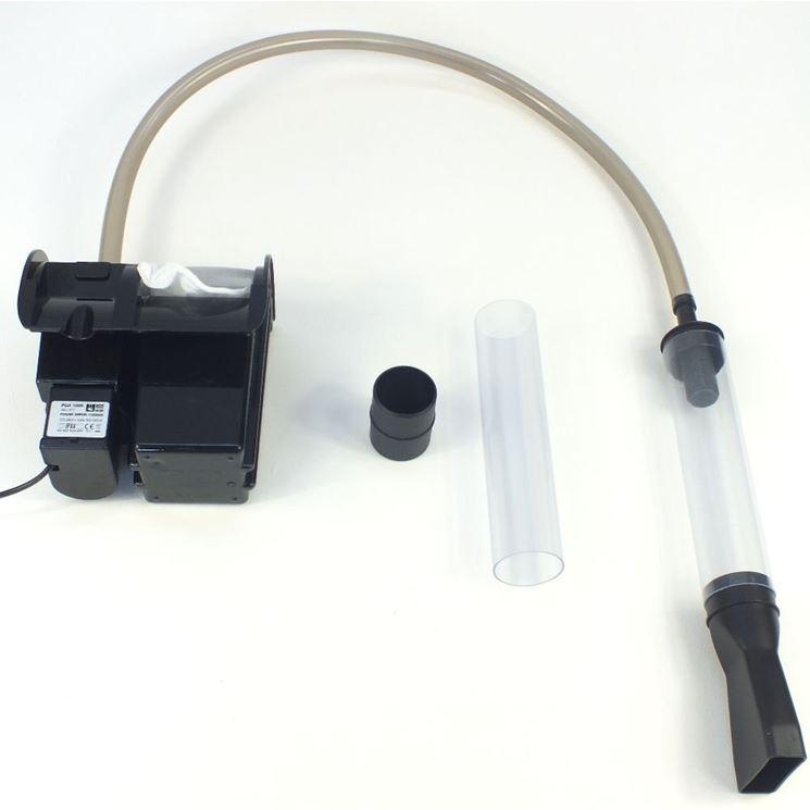 Pulizia filtro acquario accessori per acquario come for Filtro vasca pesci