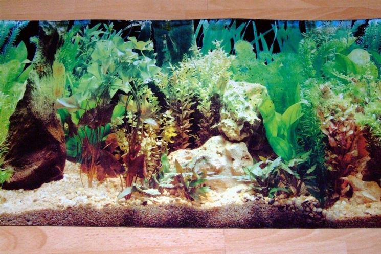 Sfondi per acquari accessori per acquario for Fondo per acquario