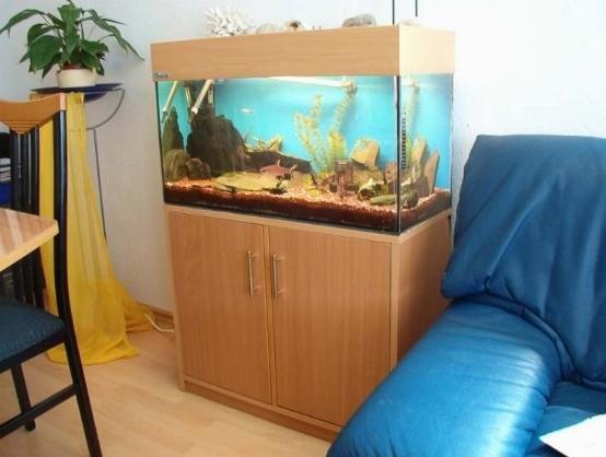 acquario 100 litri acquari