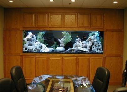 acquario da parete acquari