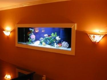 Acquario da parete acquari for Acquari moderni