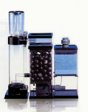 acquario filtro accessori per acquario scelta del
